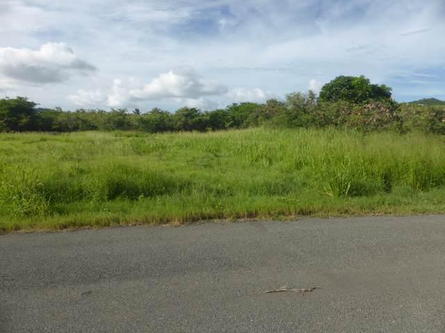 8-Q Catherine's Rest Co, St. Croix, VI 00820 (MLS #20-1744) :: Hanley Team | Farchette & Hanley Real Estate
