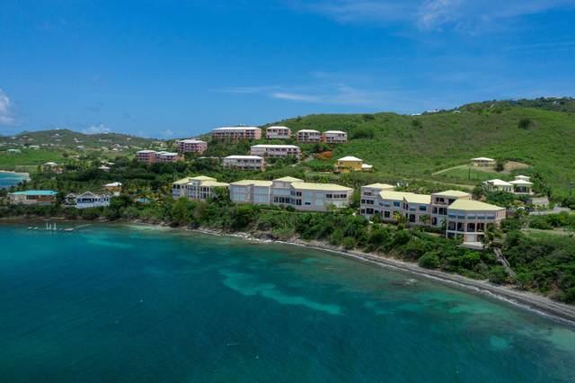 321 Coakley Bay Eb, St. Croix, VI 00820 (MLS #20-1746) :: Hanley Team | Farchette & Hanley Real Estate