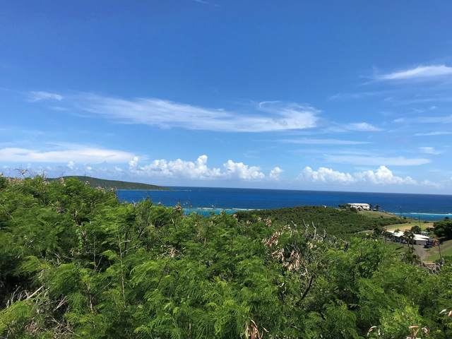 240 Cotton Valley Eb, St. Croix, VI 00820 (MLS #20-1775) :: Hanley Team | Farchette & Hanley Real Estate