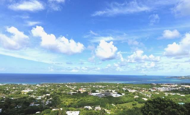 79H La Grande Prince Qu, St. Croix, VI 00820 (MLS #20-1783) :: Hanley Team | Farchette & Hanley Real Estate