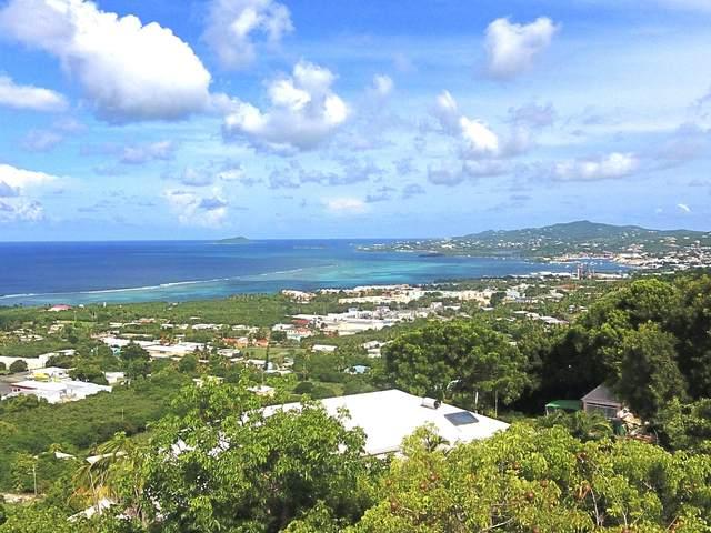 79G La Grande Prince Qu, St. Croix, VI 00820 (MLS #20-1789) :: Hanley Team | Farchette & Hanley Real Estate