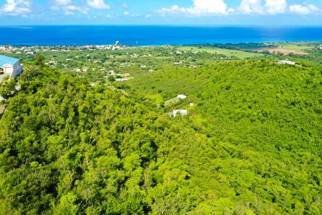 124 Frederikshaab We, St. Croix, VI 00840 (MLS #20-1812) :: Hanley Team | Farchette & Hanley Real Estate