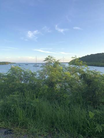 30 & 31 Morningstar Qu, St. Croix, VI 00850 (MLS #20-1818) :: Hanley Team | Farchette & Hanley Real Estate