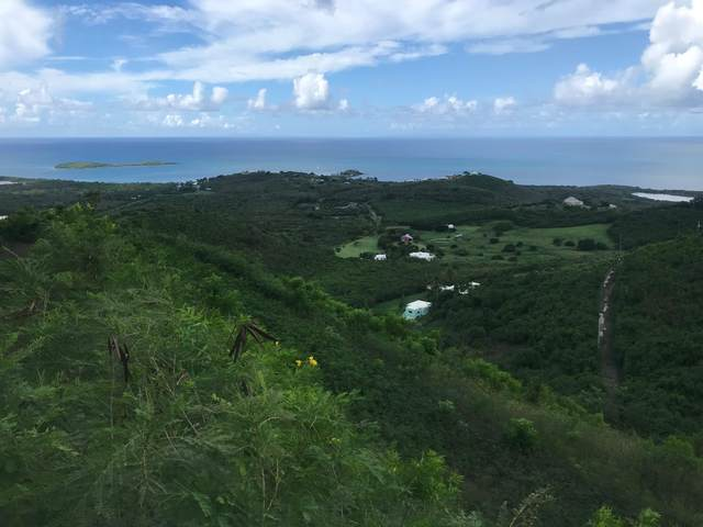 11 Seven Hills Ea, St. Croix, VI 00000 (MLS #20-1823) :: Hanley Team | Farchette & Hanley Real Estate