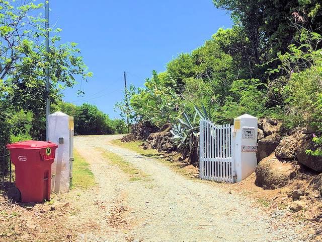 REM 7 Concordia Nb, St. Croix, VI 00840 (MLS #20-1824) :: Coldwell Banker Stout Realty