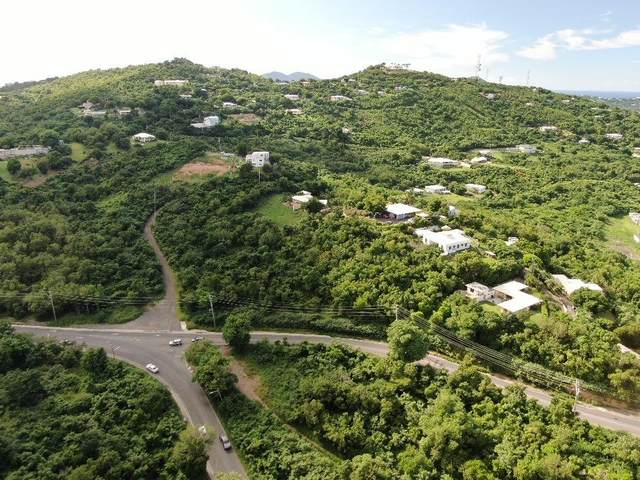 33c Beeston Hill Co, St. Croix, VI 00820 (MLS #20-1832) :: Coldwell Banker Stout Realty