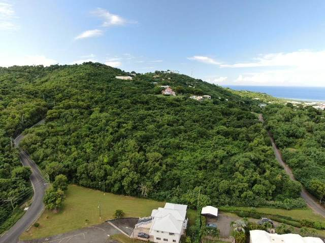 68 Beeston Hill Co, St. Croix, VI 00820 (MLS #20-1834) :: Coldwell Banker Stout Realty
