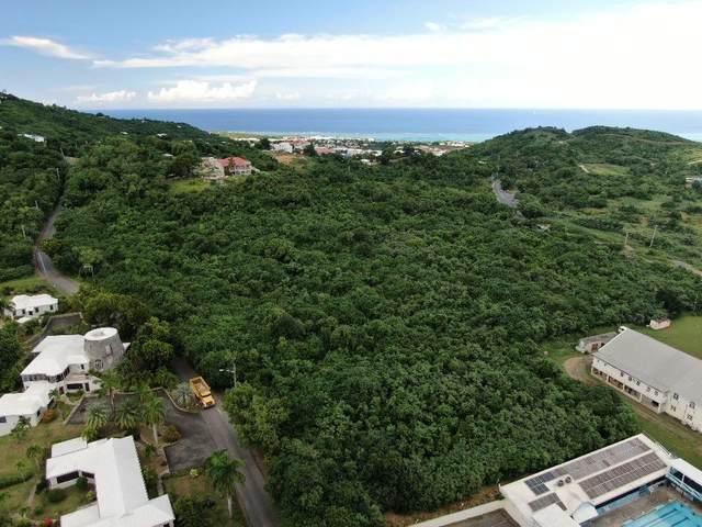 6A Beeston Hill Co, St. Croix, VI 00820 (MLS #20-1835) :: Hanley Team | Farchette & Hanley Real Estate