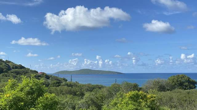 34 North Grapetree Eb, St. Croix, VI 00820 (MLS #20-1837) :: Coldwell Banker Stout Realty