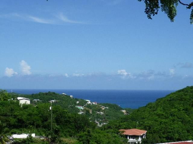 14-74 Frenchman Bay Fb, St. Thomas, VI 00802 (MLS #20-1844) :: The Boulger Team @ Calabash Real Estate