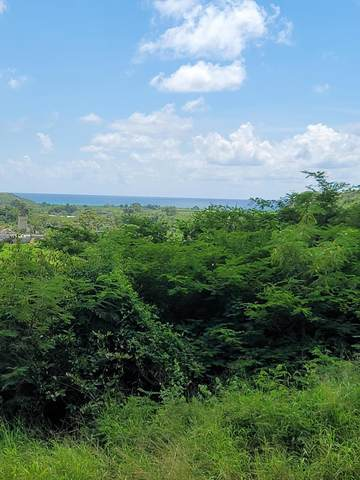 69 V.I. Corp Lands Pr, St. Croix, VI 00820 (MLS #20-1846) :: Hanley Team | Farchette & Hanley Real Estate
