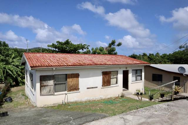 161 Mon Bijou Ki, St. Croix, VI 00850 (MLS #20-1860) :: Hanley Team | Farchette & Hanley Real Estate