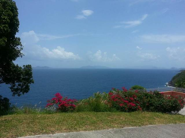 D-4-P Lovenlund Gns, St. Thomas, VI 00802 (MLS #20-1874) :: The Boulger Team @ Calabash Real Estate