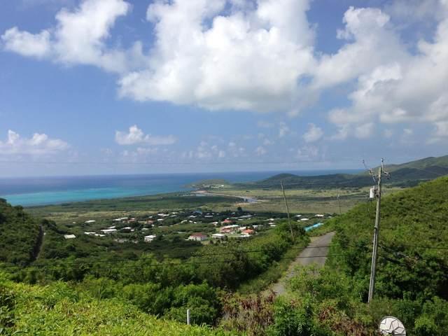 338A Union & Mt. Wash Ea, St. Croix, VI 00820 (MLS #20-1877) :: Hanley Team | Farchette & Hanley Real Estate