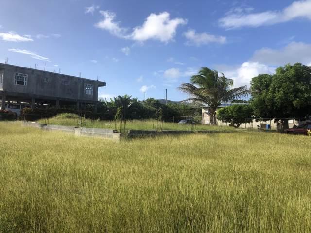 1047 William's De Pr, St. Croix, VI 00000 (MLS #20-19) :: Coldwell Banker Stout Realty