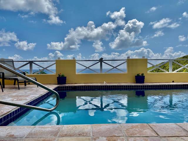 10 Teagues Bay Eb, St. Croix, VI 00000 (MLS #20-194) :: Hanley Team | Farchette & Hanley Real Estate