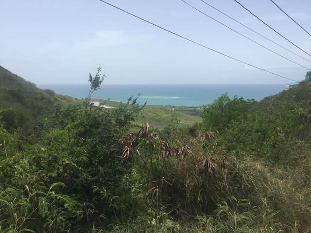 54 Solitude Eb, St. Croix, VI 00820 (MLS #20-1947) :: Hanley Team | Farchette & Hanley Real Estate