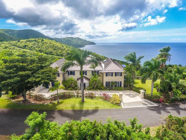 19 Prosperity Nb, St. Croix, VI 00820 (MLS #20-1961) :: The Boulger Team @ Calabash Real Estate