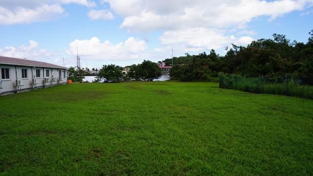 7A, 7B, 8B Hospital Street Ch, St. Croix, VI 00820 (MLS #20-197) :: Hanley Team | Farchette & Hanley Real Estate