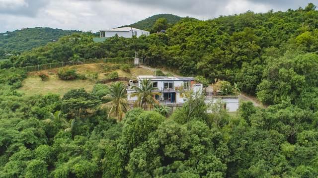 239 Grove Place Pr, St. Croix, VI 00840 (MLS #20-1971) :: Hanley Team | Farchette & Hanley Real Estate