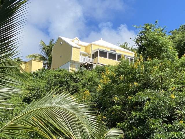 36 Montpellier Pr, St. Croix, VI 00820 (MLS #20-1981) :: The Boulger Team @ Calabash Real Estate
