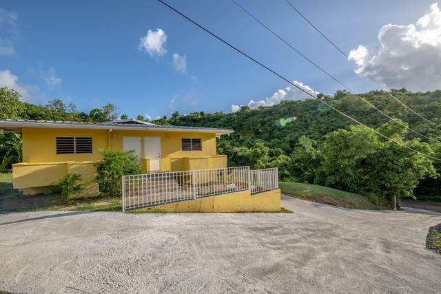 24-H Contentment Co, St. Croix, VI 00820 (MLS #20-1991) :: Coldwell Banker Stout Realty