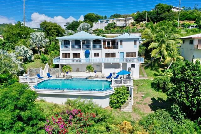 2Y-10 Nazareth Rh, St. Thomas, VI 00802 (MLS #20-1997) :: The Boulger Team @ Calabash Real Estate