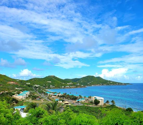 68 & 69 Turner's Hole Eb, St. Croix, VI 00820 (MLS #20-2030) :: Coldwell Banker Stout Realty