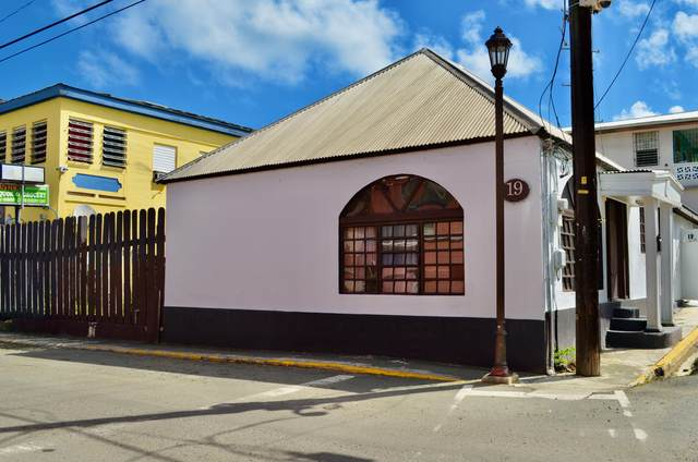 19AB Company Street Ch Studio, St. Croix, VI 00820 (MLS #20-2041) :: Hanley Team | Farchette & Hanley Real Estate