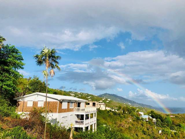 373 Wintberg Gns, St. Thomas, VI 00802 (MLS #20-2045) :: Coldwell Banker Stout Realty