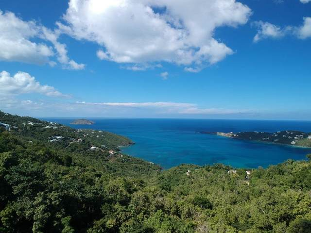 6G Misgunst Gns, St. Thomas, VI 00802 (MLS #20-2054) :: Hanley Team | Farchette & Hanley Real Estate