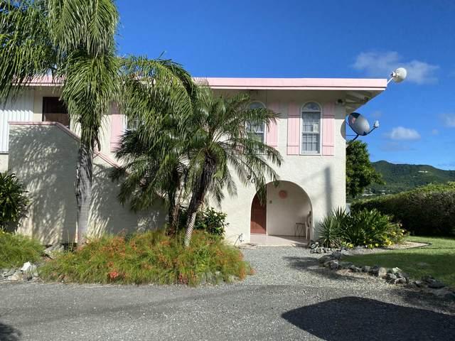 90 Southgate Farm Ea, St. Croix, VI 00820 (MLS #20-2062) :: The Boulger Team @ Calabash Real Estate