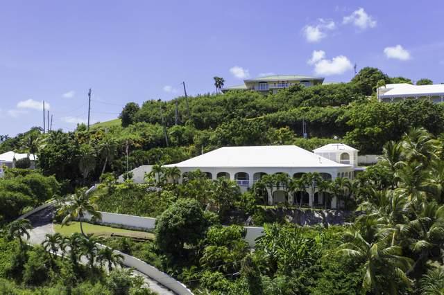 122 Anna's Hope Ea, St. Croix, VI 00820 (MLS #20-2066) :: The Boulger Team @ Calabash Real Estate