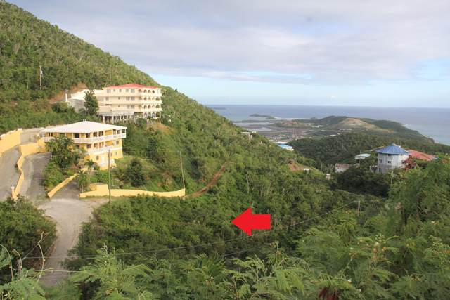 61-39 Bolongo Fb, St. Thomas, VI 00802 (MLS #20-2078) :: Hanley Team | Farchette & Hanley Real Estate