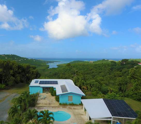 9 & 9A Montpellier Qu, St. Croix, VI 00820 (MLS #20-2079) :: Coldwell Banker Stout Realty