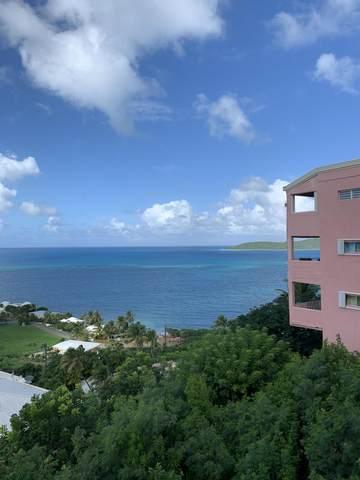 L4 Coakley Bay Ea, St. Croix, VI 00820 (MLS #20-2088) :: Hanley Team | Farchette & Hanley Real Estate