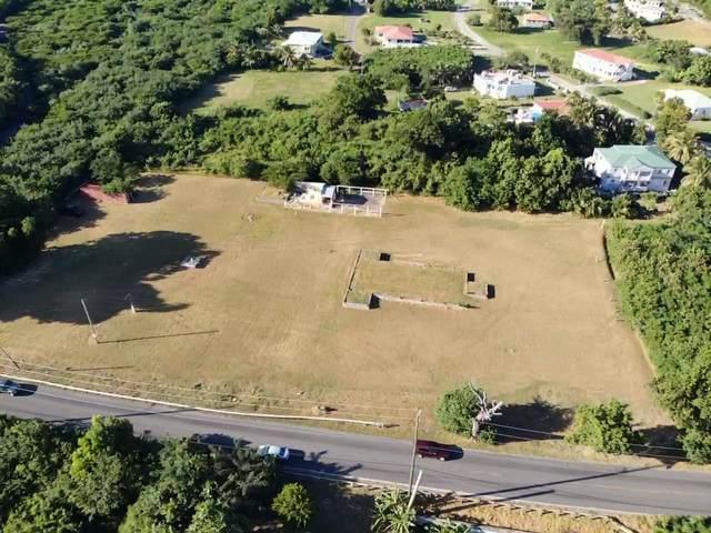 Rem 9 La Reine Ki, St. Croix, VI 00820 (MLS #20-2092) :: Hanley Team | Farchette & Hanley Real Estate