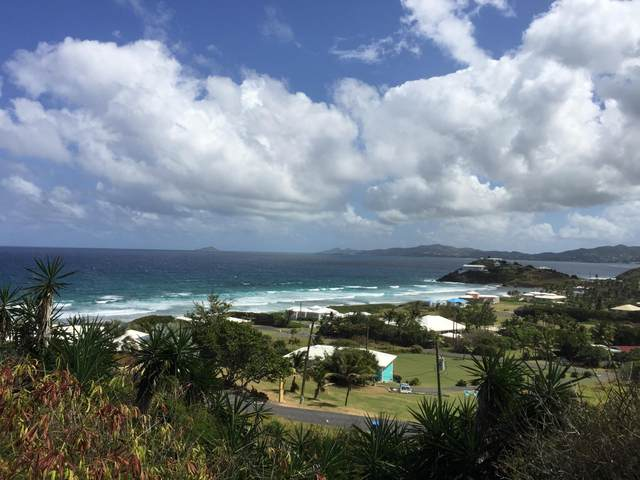 114A Judith's Fancy Qu, St. Croix, VI 00820 (MLS #20-2103) :: Hanley Team | Farchette & Hanley Real Estate