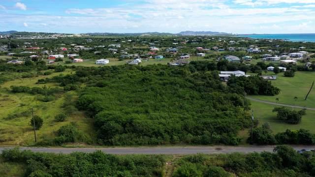 Rem 52 Carlton We, St. Croix, VI 00840 (MLS #20-2104) :: Coldwell Banker Stout Realty