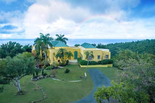 8, et. al Washington Hill Na, St. Croix, VI 00840 (MLS #20-212) :: The Boulger Team @ Calabash Real Estate