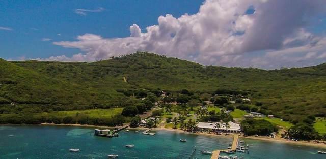 27 North Slob Eb, St. Croix, VI 00820 (MLS #20-2158) :: Hanley Team | Farchette & Hanley Real Estate