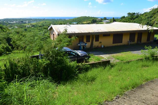 19-K Whim (Two Will) We, St. Croix, VI 00840 (MLS #20-2160) :: Coldwell Banker Stout Realty