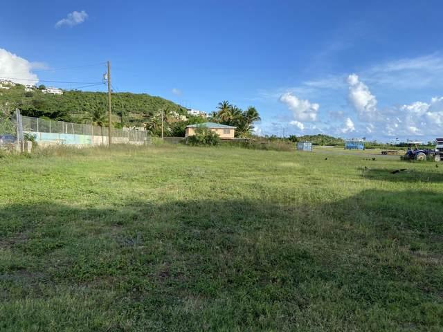 25B 25B1 Nadir Rh, St. Thomas, VI 00802 (MLS #20-2170) :: The Boulger Team @ Calabash Real Estate