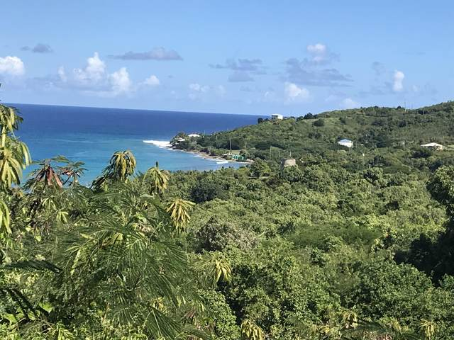 2-A-1 North Star Nb, St. Croix, VI 00850 (MLS #20-2178) :: Coldwell Banker Stout Realty