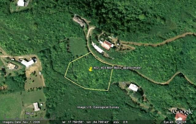 402 & 403 Mon Bijou Ki, St. Croix, VI 00840 (MLS #20-2182) :: Hanley Team | Farchette & Hanley Real Estate