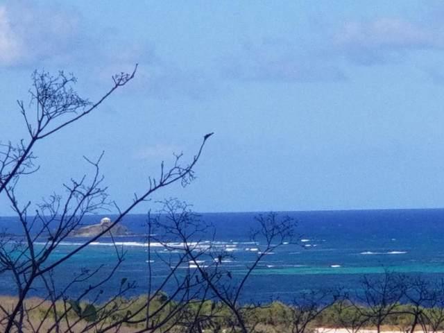 1 Great Pond Ea, St. Croix, VI 00820 (MLS #20-2187) :: Hanley Team | Farchette & Hanley Real Estate