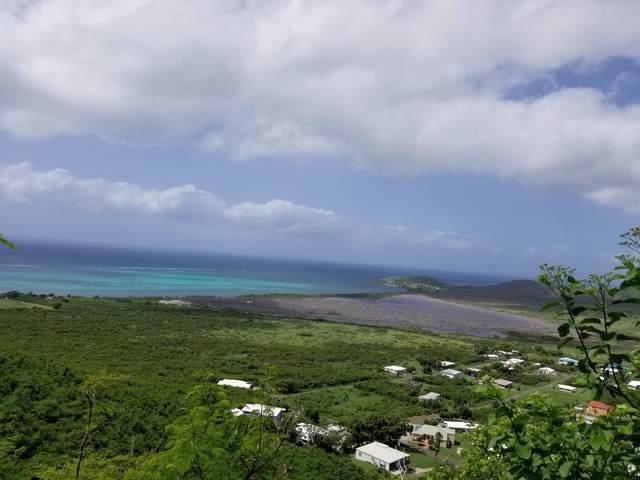 267 Union & Mt. Wash Ea, St. Croix, VI 00820 (MLS #20-2190) :: Coldwell Banker Stout Realty
