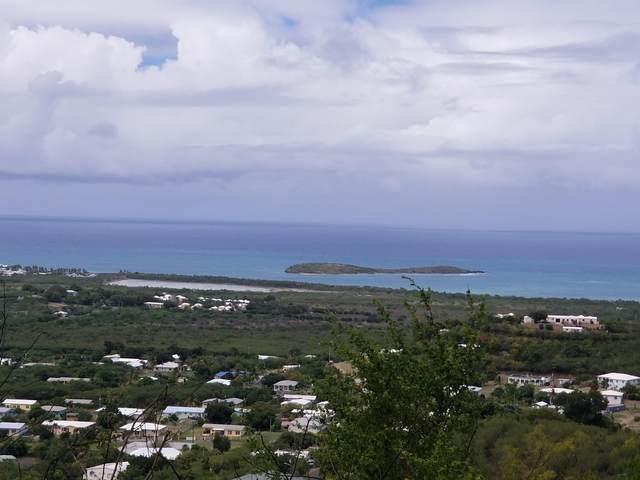190 Union & Mt. Wash Ea, St. Croix, VI 00820 (MLS #20-2191) :: Coldwell Banker Stout Realty
