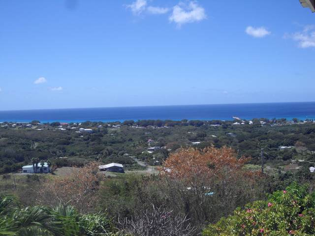 138 Frederikshaab We, St. Croix, VI 00820 (MLS #20-2193) :: Coldwell Banker Stout Realty