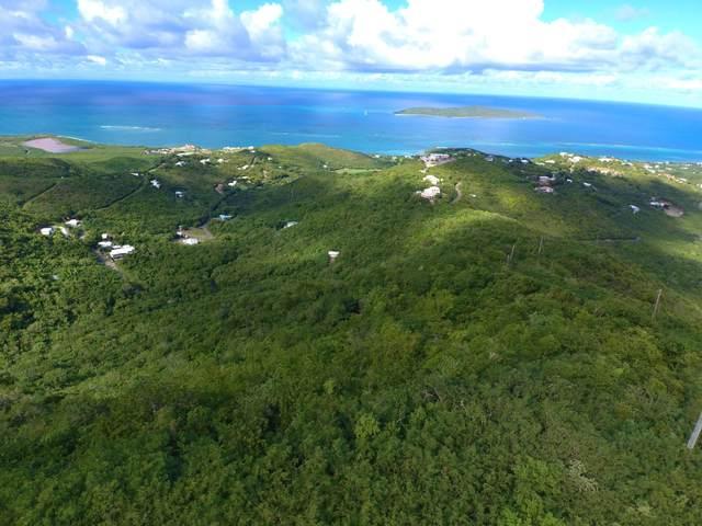 1 and 6 Little Profit Eb, St. Croix, VI 00820 (MLS #20-2195) :: Hanley Team | Farchette & Hanley Real Estate